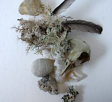 still life with lichen. by AnjiMarth