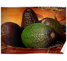 Still Life With Avocados Poster
