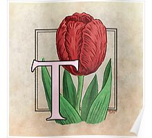 T is for Tulip - full image Poster