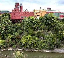 Genesee Brewery on the Genesee River by Mikell Herrick
