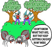 Spider Web Humor by Skree