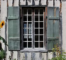 Green Window with Sunflower by marybedy