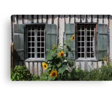 Green Windows Sunflowers Canvas Print