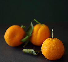 Three Mandarins by Clare Colins