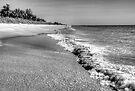 Captiva Shore by njordphoto