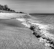Captiva Shore by njordphoto
