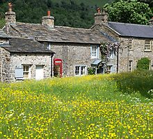 Arncliffe in Littondale Summer Flowers by Nick Jenkins