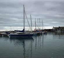 Yachts In Harbour by lynn carter