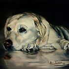 Yellow Labrador by Anne Zoutsos