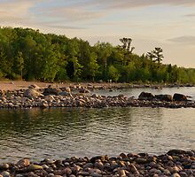 Awenda Beach, Ontario at the Golden Hour by Gerda Grice