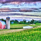 North of Marshall, Michigan in Calhoun, County by Rocco Goff