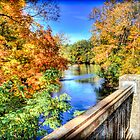 Kalamazoo River, Battle Creek, MI by Rocco Goff