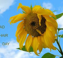 Bad Hair Day Sunflower by Kathleen Brant