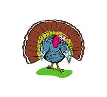 Wild Turkey Retro by patrimonio