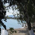 Through trees boats on the water by Eleanor11