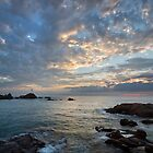 Golden light, La Corbiere by Rachael Talibart