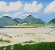 Luskentyre by Richard Paul