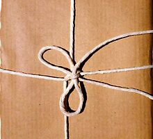 Brown paper package wrapped up in string by bardenne
