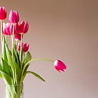 Glass vase with bunch of pink tulips by sc-images