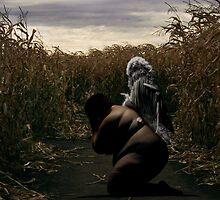 Angel in a Corn Field by Jeff Kingston
