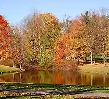 Punderson Pond by Monnie Ryan