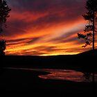 Yellowstone Sunset by Steve Upton