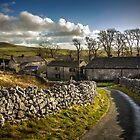 Twistleton Farm  by Tony Shaw