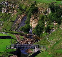 Intake Bridge ,Bog Scar and Sleightholme Beck, North Pennines, England. by Ian Alex Blease
