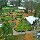 Floriade From Above by Penny Smith