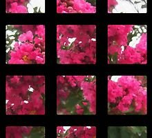 Crape Myrtle Art Rectangles 2 by Christopher Johnson