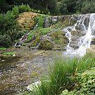 Blenheim Cascade by CreativeEm