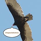 Congratulations Banner; The Birds Group by leih2008