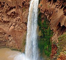 Mooney Falls Study 2 by Robert Meyers-Lussier