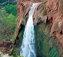 Havasu Falls Study 3 in am  by Robert Meyers-Lussier