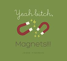 Yeah Bitch, Magnets! by kymunchie