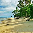 Pangubatan Beach by Heiko Voss