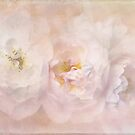 dreaming of roses by Teresa Pople