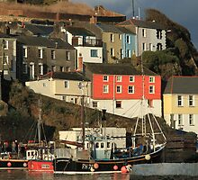 Mevagissey Harbour by Judi Lion
