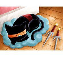 Ninja Cat Nap Photographic Print