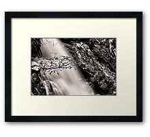 Crater Falls, Cradle Mountain National Park, Tasmania #3 Framed Print