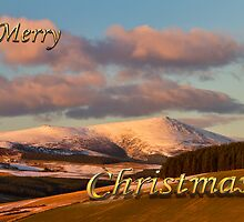 MERRY CHRISTMAS - BEN RINNES by JASPERIMAGE