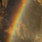Rainbow at Skogafoss by Judi Lion