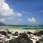 Beach in Lanzarote by Judi Lion