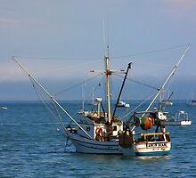 Avila Bay  by CarolM