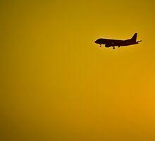 Landing by Gustavo Bernal