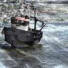 Beached Boat by Tony Shaw