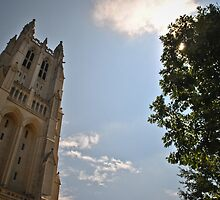 Washington National Cathedral 8 by Gustavo Bernal