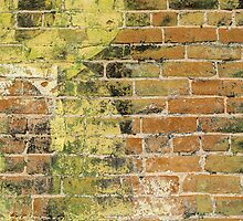 Brick Wall 3 by Photopa