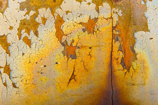Gold Vein by Marilyn Cornwell