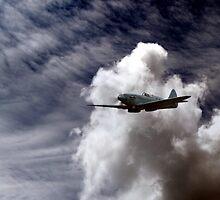 The Photographic Reconnaissance Spitfire PR Mk XIX  by larry flewers